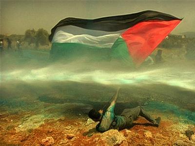 palestine flag waving